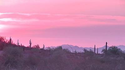 Photograph - Pink Sunrise Over The Sonoran Desert by Judy Kennedy