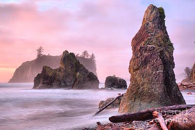 Photograph - Pink Sunset At Ruby Beach by Adam Jewell