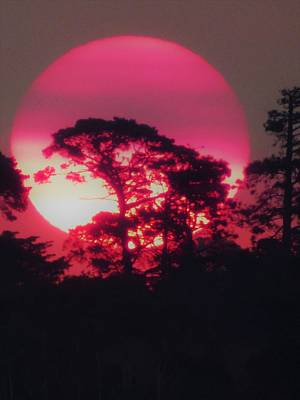 Photograph - Pink Sunset Unfiltered by Jennifer Baulch