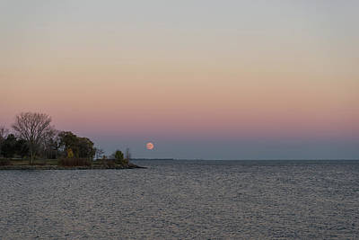 Photograph - Pink Supermoon Rising by Georgia Mizuleva