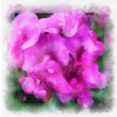 Digital Art - Pink Sweet Peas by Judi Suni Hall
