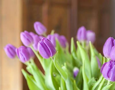 Photograph - Pink Tulips At Home by Patricia Hofmeester