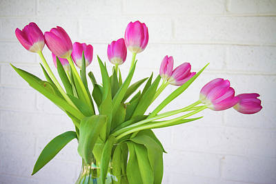Photograph - Pink Tulips In A Vase by James BO Insogna