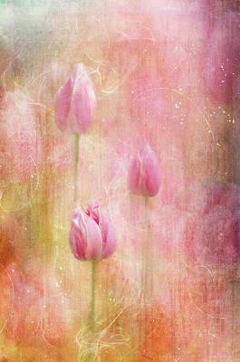 Altered Art Digital Art - Pink Tulips by Margaret Goodwin