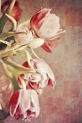 Double Layer Photograph - Pink Tulips On Checkers by Cathie Tyler
