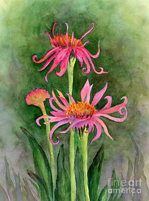 Pink Tutus - Coneflowers Art Print by Amy Kirkpatrick