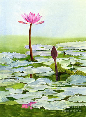 Water Lily Leaves Painting - Pink Water Lily Blossom With Bud by Sharon Freeman
