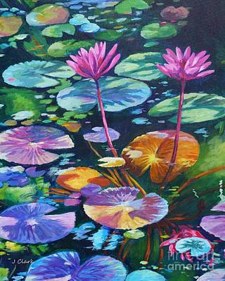 Pink Waterlilies Art Print by John Clark