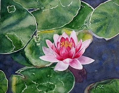 Painting - Pink Waterlily by Deane Locke
