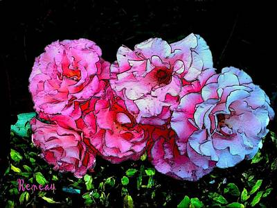 Photograph - Pink - White Roses  by Sadie Reneau