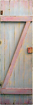 Old Panelled Door Painting - Pink Z Door by Asha Carolyn Young