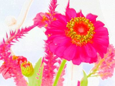 Photograph - Pink Zinnia Watercolor  by Belinda Lee