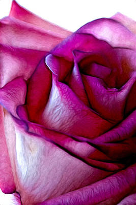Pinked Rose Details Art Print by Bill Tiepelman