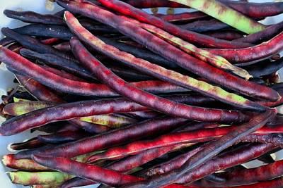 Photograph - Pinkeye Purple-hull Beans by Kathryn Meyer