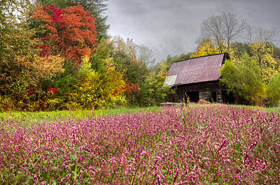 Red Roof Photograph - Pinks In The Pasture by Debra and Dave Vanderlaan