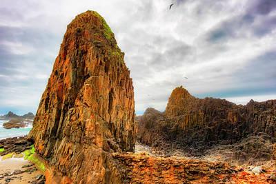 Photograph - Pinnacle Seal Rock Beach by Dee Browning
