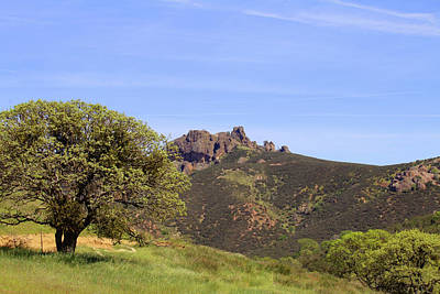 Photograph - Pinnacles Vista by Art Block Collections