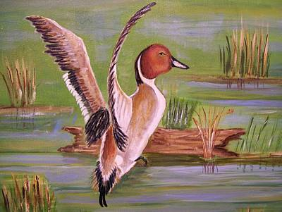Art Print featuring the painting Pintail Duck II by Belinda Lawson