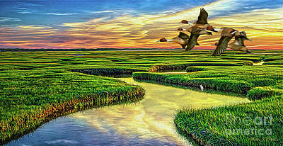 Digital Art - Pintail Duck  by Walter Colvin