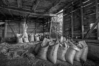 Tn Barn Photograph - Pinto Beans by Debra and Dave Vanderlaan