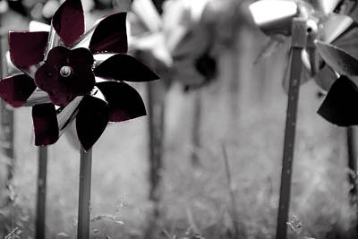 Photograph - Pinwheels by Mamie Thornbrue