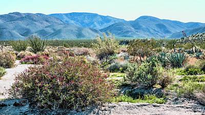 Pyrography -  Pinyon Mtns Desert View by Daniel Hebard