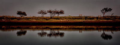 Photograph - Pipers Lagoon by Randy Hall