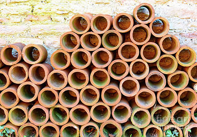 Photograph - Pipes by Colin Rayner