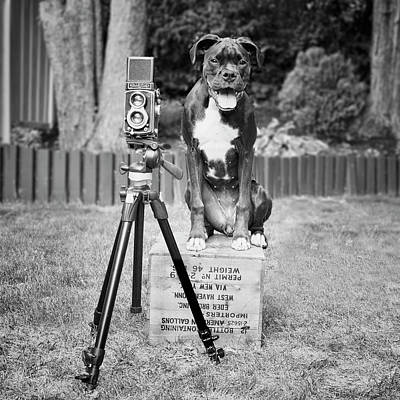 Pipographer Piper The Photographer Art Print by Stephanie McDowell