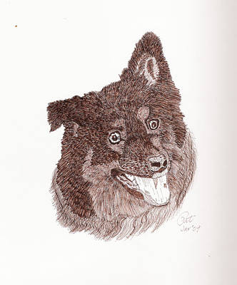 Sepia Ink Drawing - Pippin by Pat Price