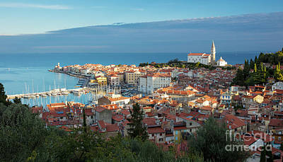 Photograph - Piran Dawn by Brian Jannsen