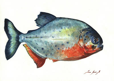 Fishing Wall Art - Painting - Piranha Fish by Juan Bosco