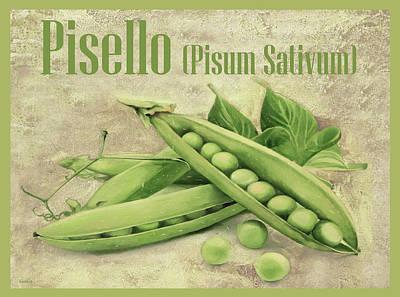 Royalty Free Images - Pisello pisum sativum Royalty-Free Image by Guido Borelli