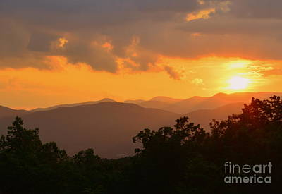 Photograph - Pisgah Forest by Lew Davis