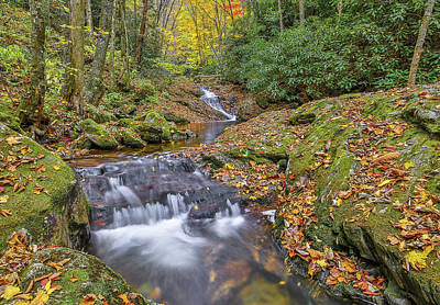 Photograph - Pisgah National Forest Flowing Creek by Donnie Whitaker