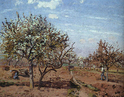 Pissarro Orchard In Bloom At Louveciennes Art Print by Camille Pissarro