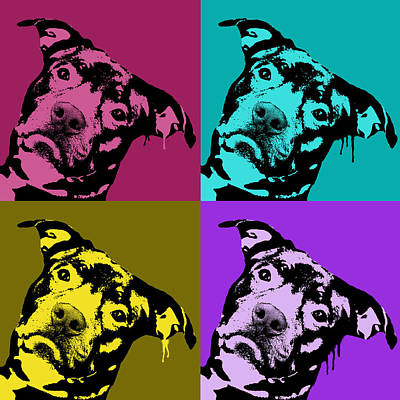 Pitbull Wall Art - Painting - Pit Face by Dean Russo
