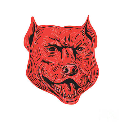 Pitbull Digital Art - Pitbull Dog Mongrel Head Drawing by Aloysius Patrimonio