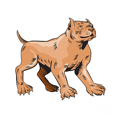 Bull Mastiff Digital Art - Pitbull Dog Mongrel Standing Etching by Aloysius Patrimonio