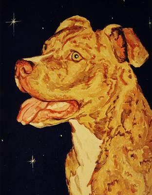 Pitbull Painting - Pitbull by John Malone