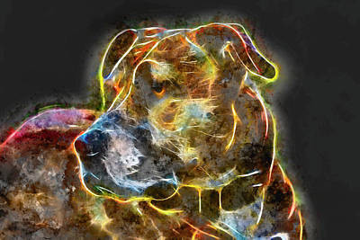 Digital Art - Pitbull by Petrus Bester