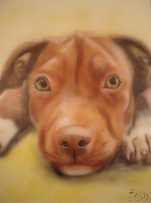 Painting - Pitbull Puppy by Bas Hollander
