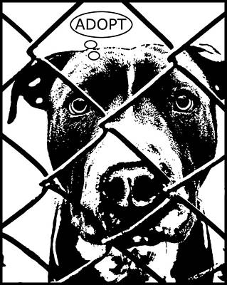 Pitbull Wall Art - Painting - Pitbull Thinks Adopt by Dean Russo