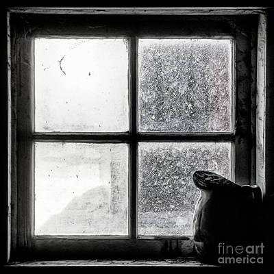 Pitcher In The Window Art Print