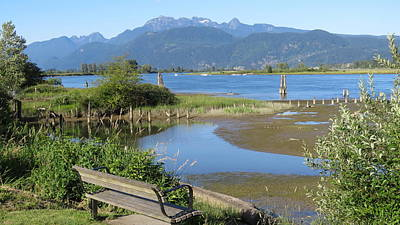 Photograph - Pitt River by Hagen Pflueger