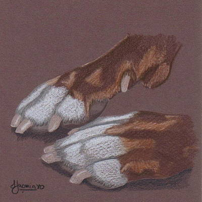Pit Bull Drawing - Pitty Feet by Stacey Jasmin