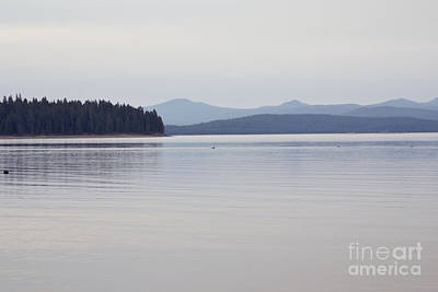 Photograph - Placid Mountain Lake by Cindy Garber Iverson