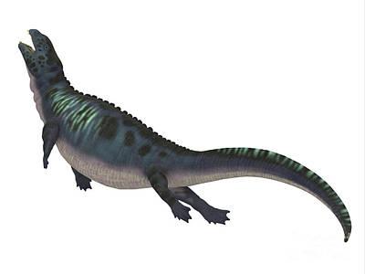 Triassic Digital Art - Placodus Dinosaur Side Profile by Corey Ford