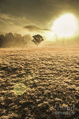 Photograph - Plain Morning by Jorgo Photography - Wall Art Gallery