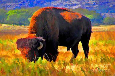 Plains Buffalo Art Print by JohnD Smith